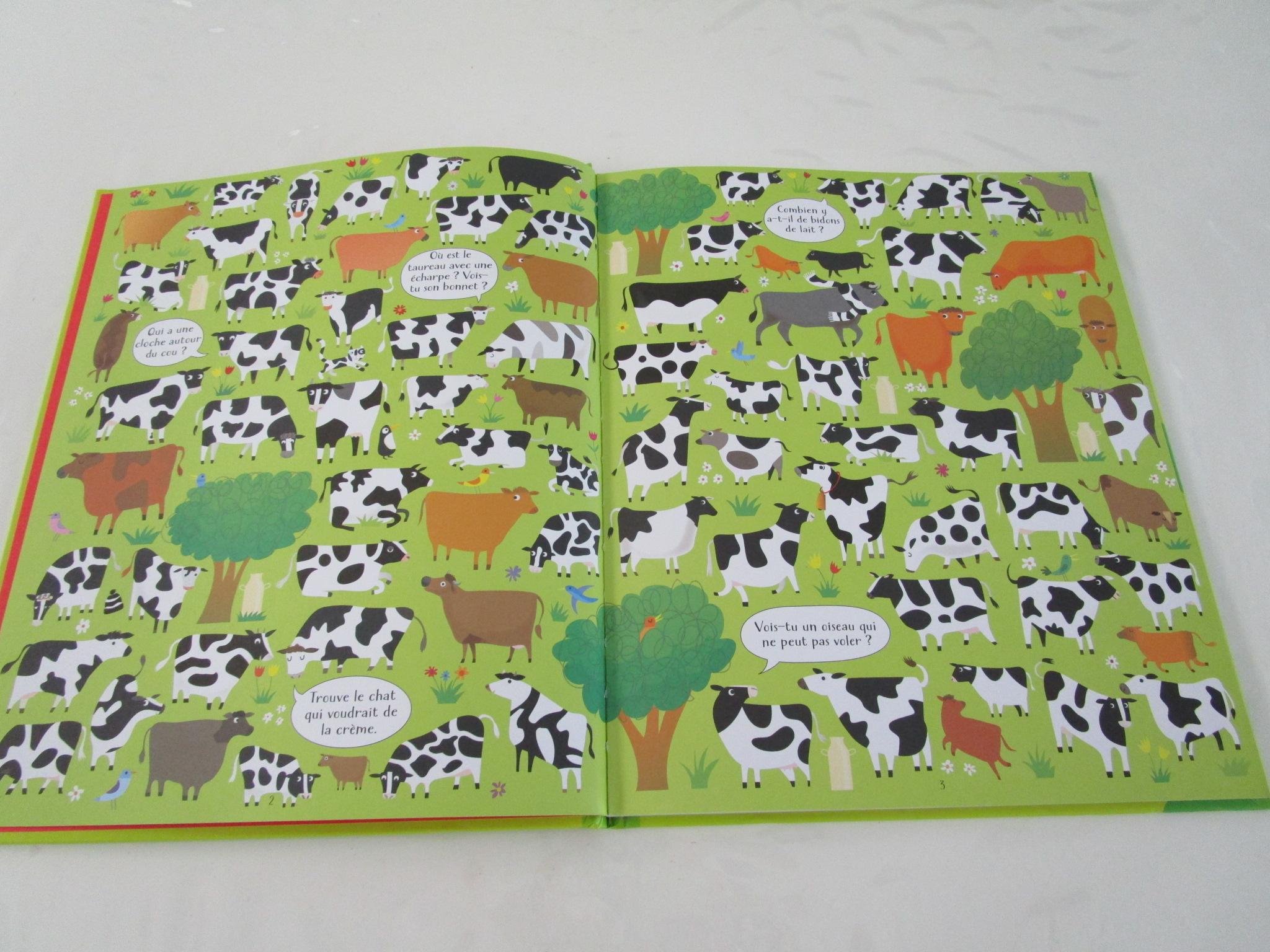 Cherche Et Trouve A La Ferme Editions Usborne