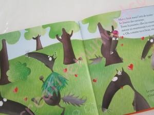 Quiet Book Le loup qui n'aimait pas sa couleur
