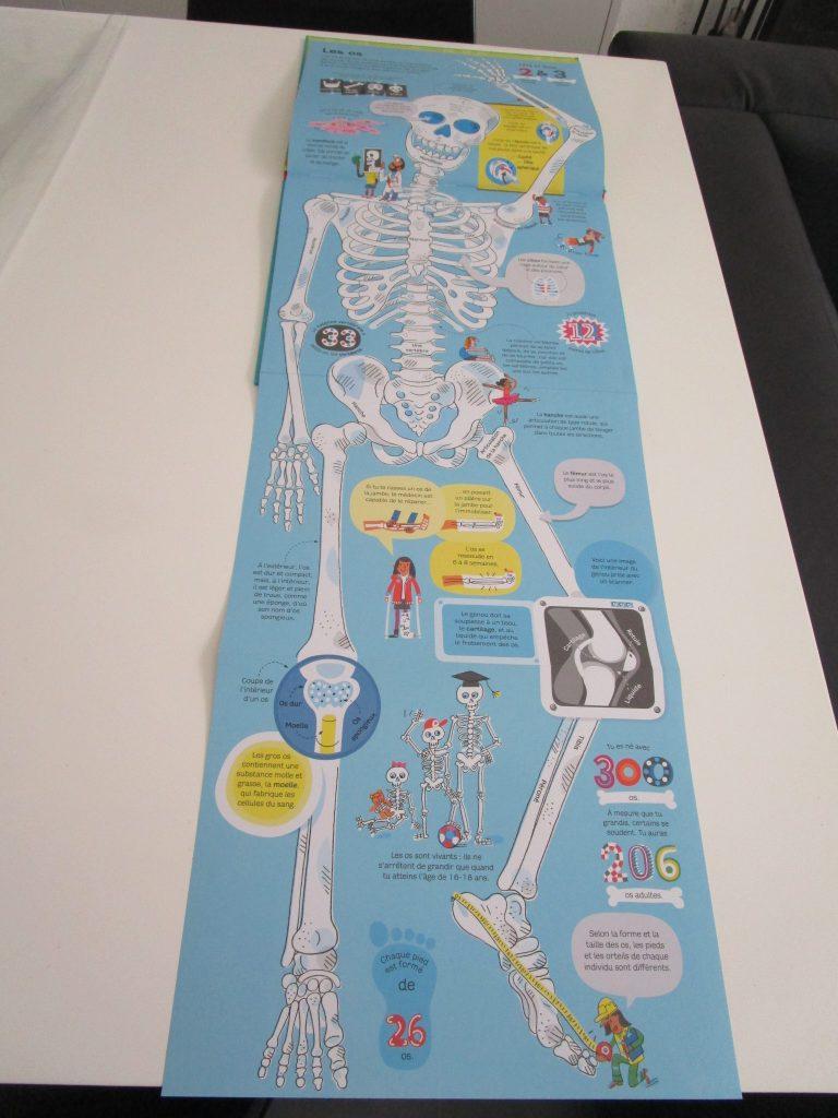 Mon livre du corps humain Usborne les os