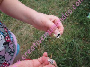 DIYDIY: faire ses sachets de graines maison récolte de graines
